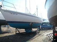 1988 Cleveland Ohio 34 Catalina 34 Cruiser